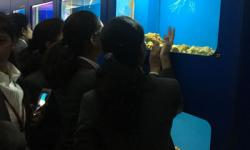 Students of 2nd semester have visited the Planet Earth Aquarium Mysuru on 10th March 2018